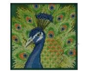 Proud Peacock (набор)