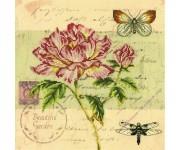 M70014 Почтовая открытка - Пион (набор)