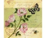 M70015 Почтовая открытка - Шиповник (набор)