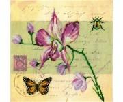 M70017 Почтовая открытка - Орхидея (набор)