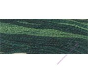 Spinach (CCT-029)