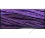 Pansy Purple (CCT-102)