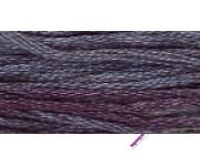 0230 Blueberry