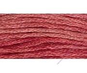 7008 Rhubarb